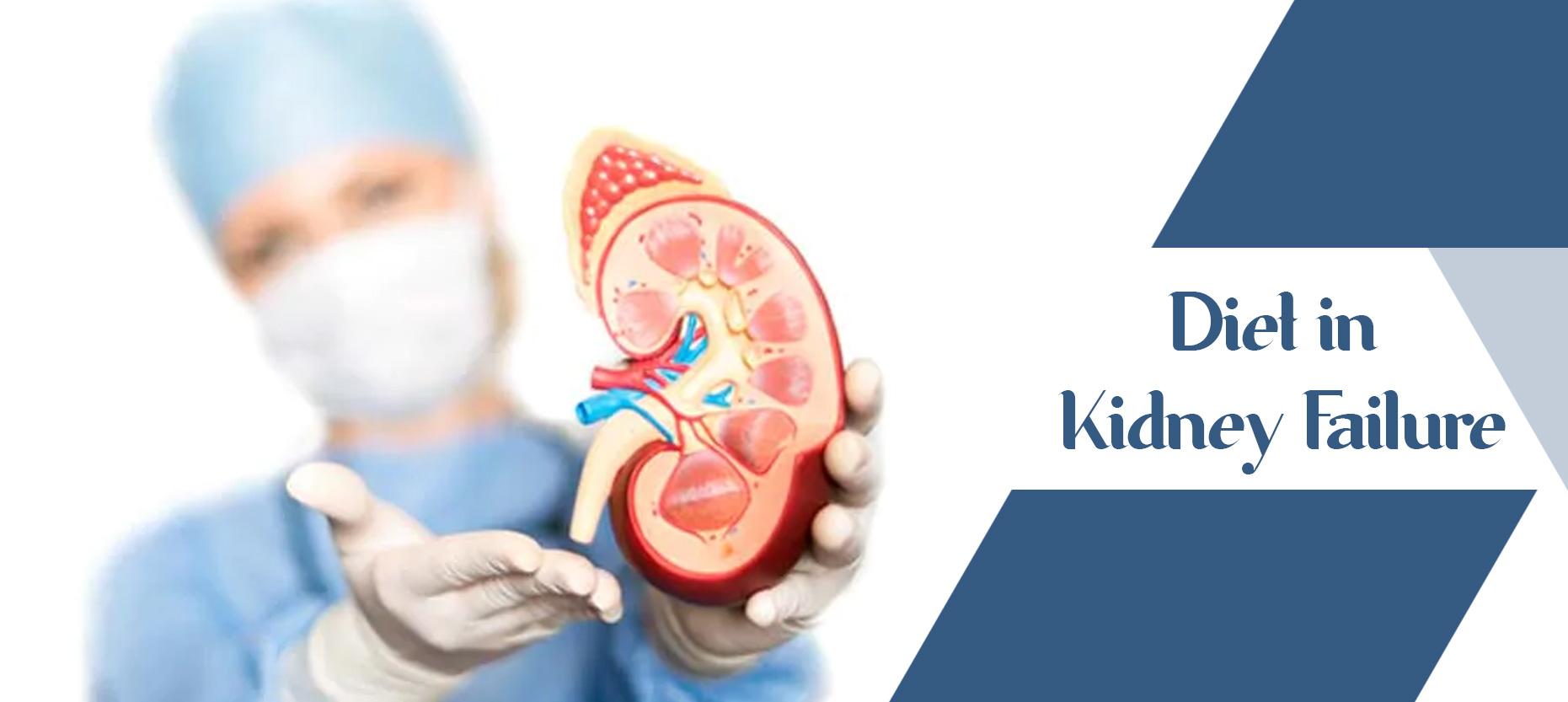 Diet in Kidney Failure