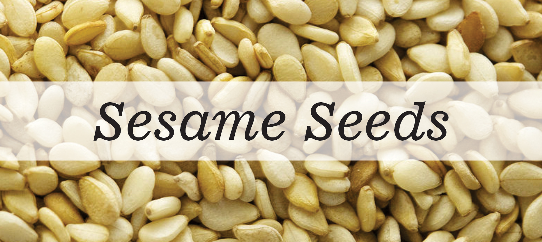 Sesame Seeds – Big nutrition in a small package