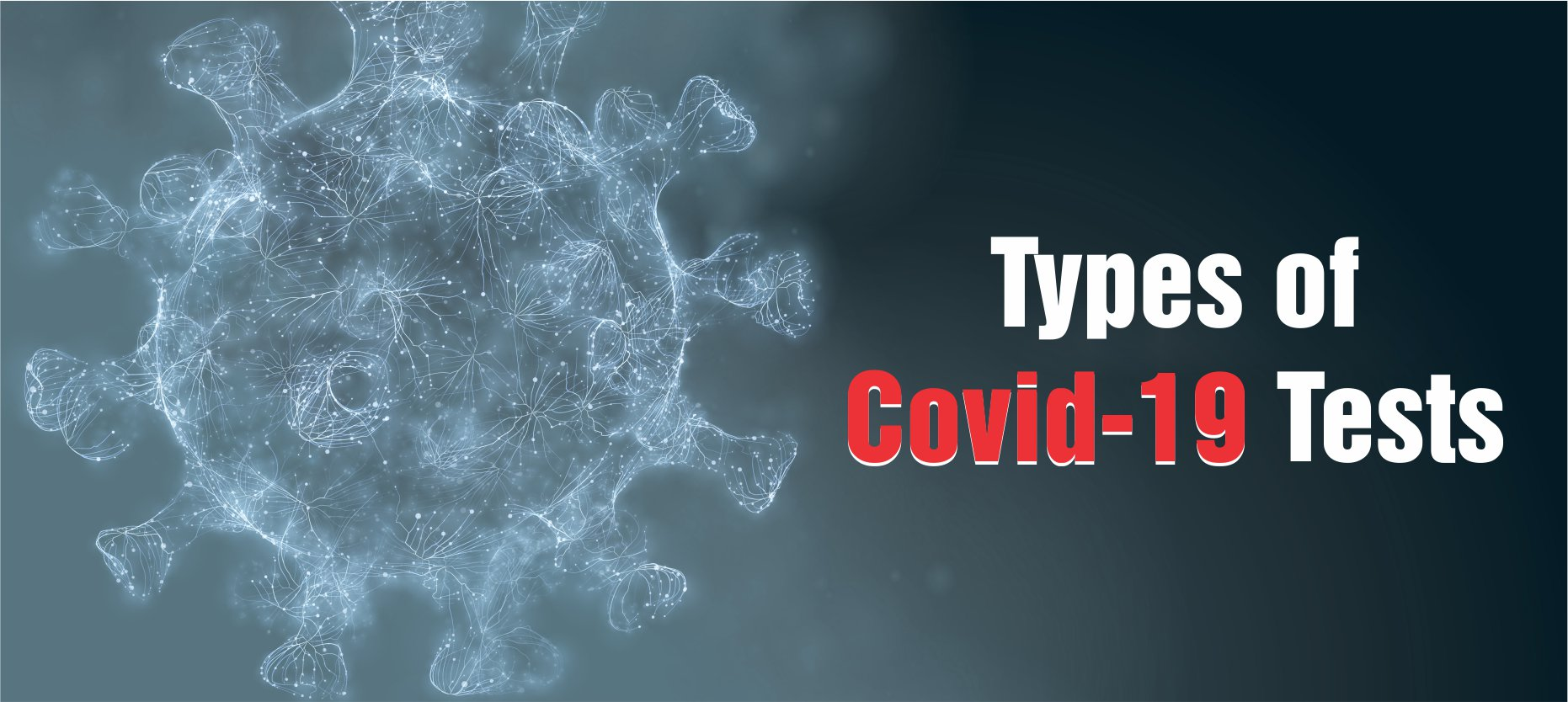 The Different Types Of Covid-19 Tests